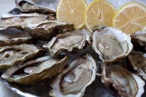 Фестиваль новозеландских устриц в ресторане «Рыбный базар»