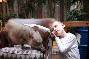 Программа детских праздников в Fanny Cabany на декабрь