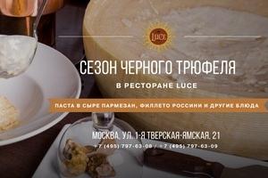 Сезон черного трюфеля в Luce