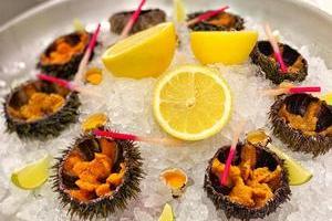 Фестиваль морских ежей в ресторане «Рыбный базар»