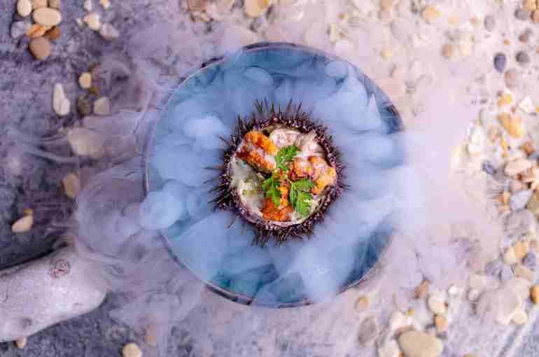 Сахалинский морской еж с салатом из лосося - 450р