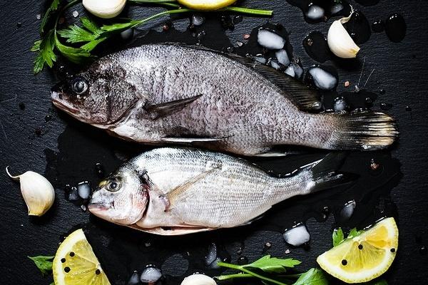 fishe.jpg