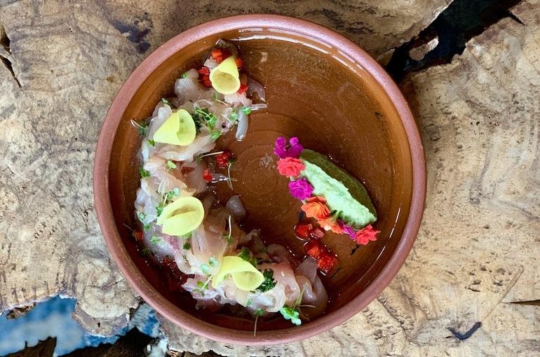 Сугудай из нельмы с гуакамоле из яблока и щавеля, с водным крессом