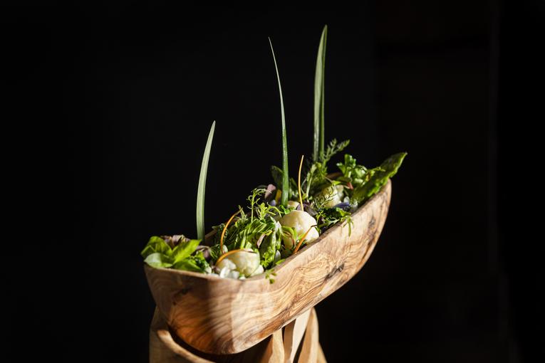 Садовый салат, соус грибиш