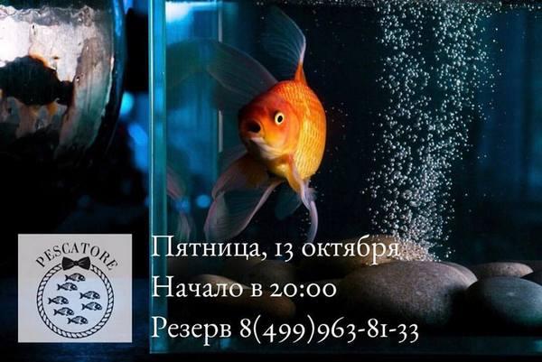 22405533_755209958000540_8402631897499973510_n.jpg
