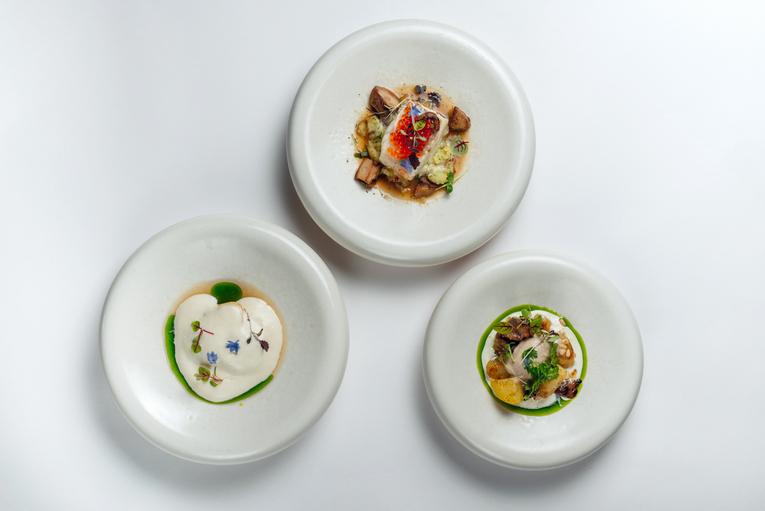 Ресторн Touche, сет РРФ 2021